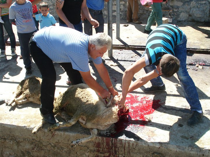 Albania Land of Sacrifice (photo)